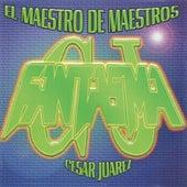 El Maestro de Maestros de Various Artists