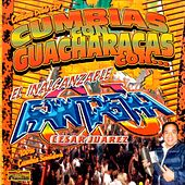 Cumbias Con Guacharacas de Various Artists