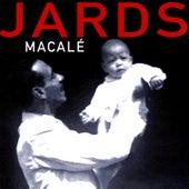 O Que Faco E Musica by Jards Macalé