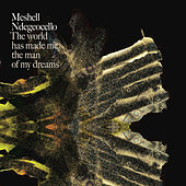 The World Has Made Me The Man Of My Dreams by Meshell Ndegeocello