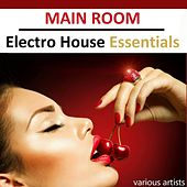 Main Room Electro House Essentials by Various Artists