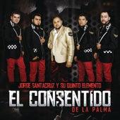 El Consentido de la Palma by Jorge Santa Cruz