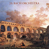 J.S. Bach: Violin Concerto - Vivaldi: the Four Seasons - Albinoni: Adagio - Pachelbel: Canon in D Major - Walter Rinaldi: Adagio for Oboe; Orchestral Works - Mozart: Turkish March - Beethoven: Moonlight Sonata - Schubert: Ave Maria - Vol. IX de Johann Sebastian Bach