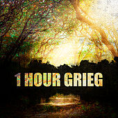 1 Hour Grieg by Various Artists