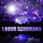 1 Hour Schumann de Various Artists