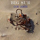 Big Sur (Acoustic Version) von Ceri James