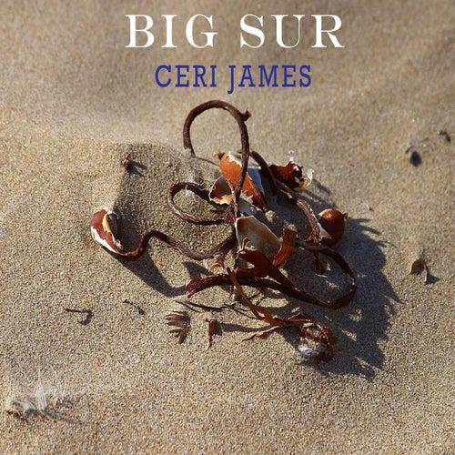 Big Sur (Acoustic Version) von Ceri James