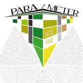 Para / Meter, Vol. 5 de Various Artists