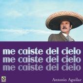 Me Caiste Del Cielo by Antonio Aguilar