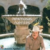 Hermosas Fuentes by Antonio Aguilar