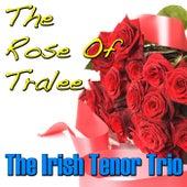 The Rose of Tralee de The Irish Tenors