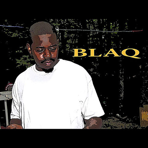 Dmv We Doing 2 Much by Blaq