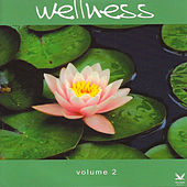 Wellness Vol.2: A Beautiful Journey to Inner Relaxation by Various Artists