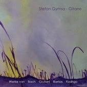 Gitarre by Stefan Gymsa