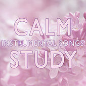 Calm Instrumental Songs for Study de Studying Music