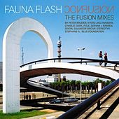 Confusion: The Fusion Remixes by Fauna Flash
