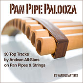 Pan Pipe Palooza (30 Tracks by Andean All-Stars on Pan Pipes & Strings) von Various Artists