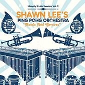 Moods and Grooves by Shawn Lee's Ping Pong Orchestra