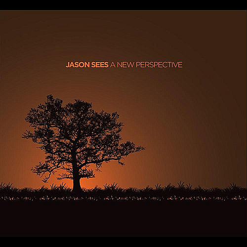 A New Perspective by Jason Sees