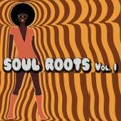Soul Roots Vol. 1 von Various Artists