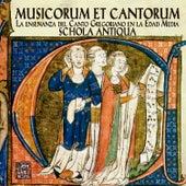 Musicorum et Cantorum by Various Artists