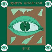 Eye by Robyn Hitchcock