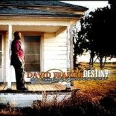 Psalms Hymns & Spiritual Songs Vol IV Destiny by David Frazier