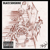 Black Sunshine von Various Artists