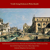 Vivaldi: the Four Seasons & Guitar Concerto / Walter Rinaldi: Orchestral and Piano Works / Pachelbel's Canon in D Major / Bach: Air On the G String & Violin Concertos / Albinoni: Adagio in G Minor / Mendelssohn: Wedding March / Here Comes the Bride by Various Artists