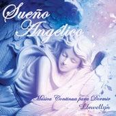 Sueño Angélico: Música Continua para Dormir by Llewellyn