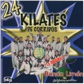 24 Kilates de Corridos by La Arrolladora Banda El Limon