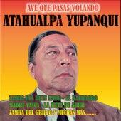 Ave Que Pasas Volando by Atahualpa Yupanqui