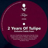 Two Years Of Tulipe by Various Artists