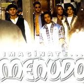 Imaginate by Menudo