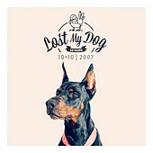 Lost My Dog 10 x 10 von Various Artists