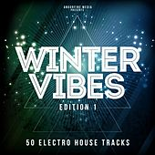 Winter Vibes - Edition 1 by Various Artists