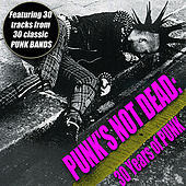 Punk's Not Dead - 30 Years Of Punk de Various Artists