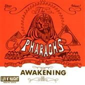 Awakening by The Pharoahs