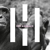 Des animaux de Hollydays