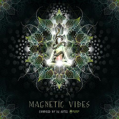 Magnetic Vibes by Various Artists