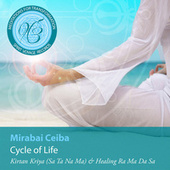 Meditations for Transformation: Cycle of Life de Mirabai Ceiba
