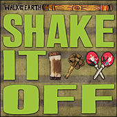 Shake It Off by Walk off the Earth