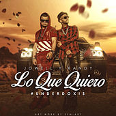 Lo Que Quiero - Single de Jowell & Randy