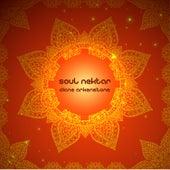 Soul Nektar de Diane Arkenstone