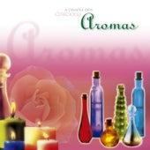 A Terapia Dos Aromas de Corciolli