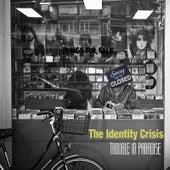 Trouble in Paradise de Identity Crisis