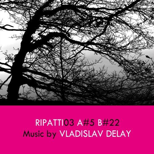 Ripatti03 by Vladislav Delay