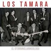 El Otorrinolaringologo de Los Tamara