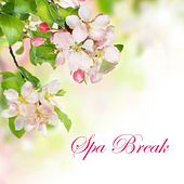 Spa Break - Relaxing Spa Massage Music with Peaceful and Calming Nature Sounds & White Noise by S.P.A