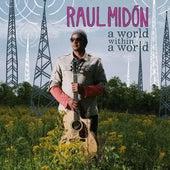 A World Within A World de Raul Midon